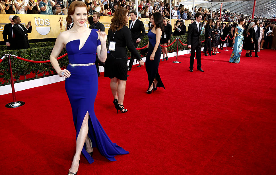 Amy Adams at the 20th Annual Screen Actors Guild Awards, January 2014.